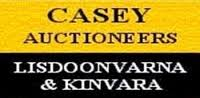 Casey Auctioneers