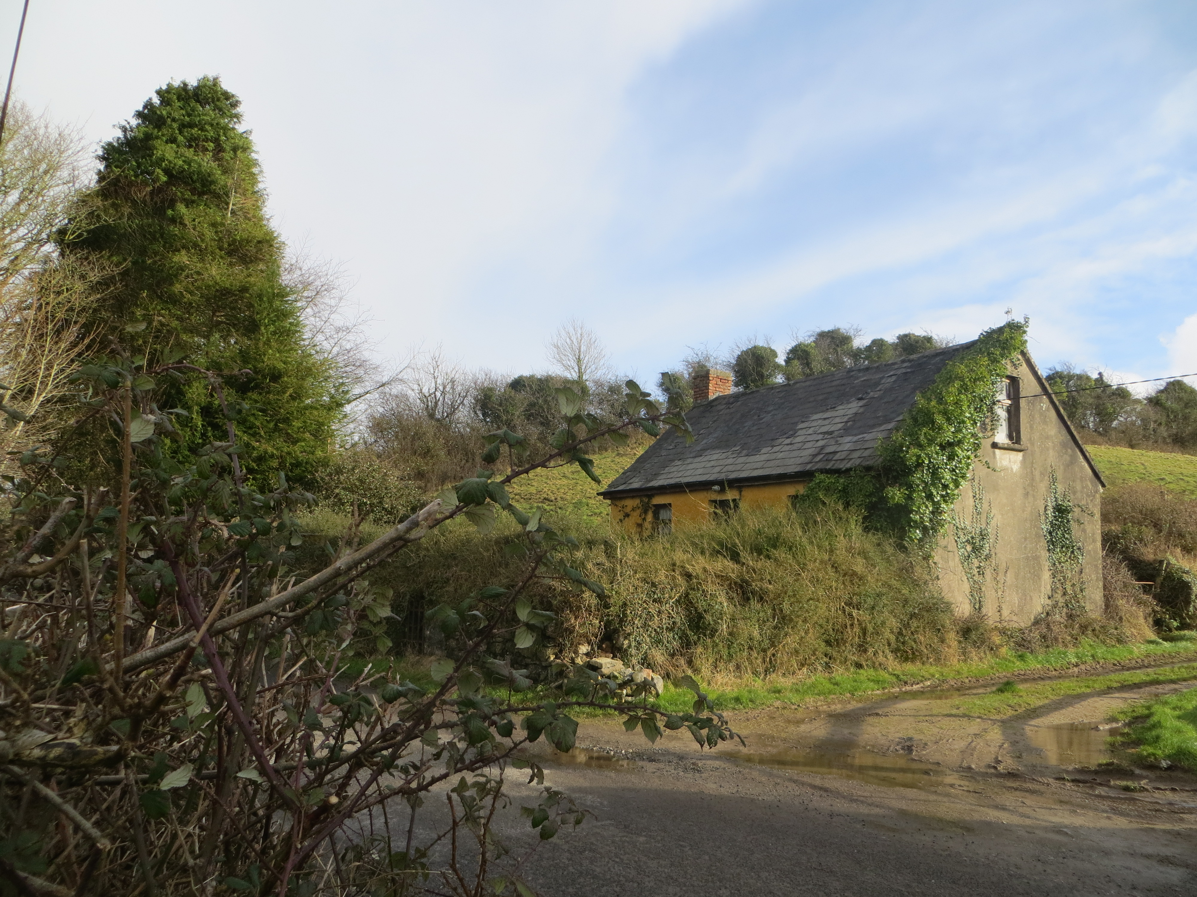 €40,000 or nearest offer_  Bodyke derelict cottage in lovely community surrounds_