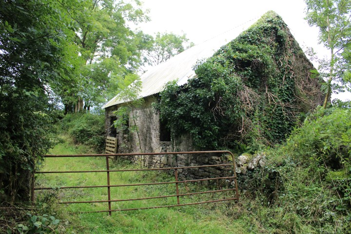 DerryCastle old stone cottage with circa one acre_ Bargain_