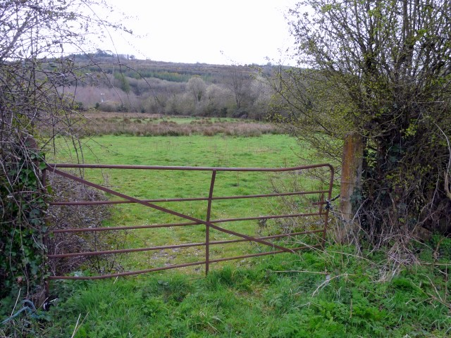 c_2_78 acre site for Sale Lacken Birdhill
